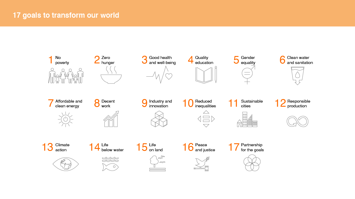 Sustainable development goals explained