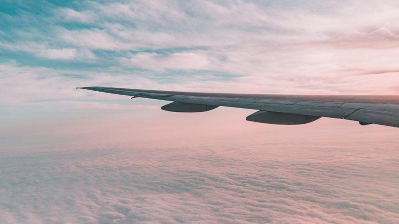 Transporte funerario aereo precio